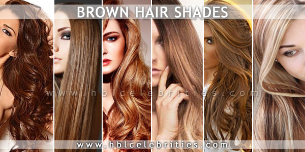 Brown Hairs With Dark Light And Blonde Highlights